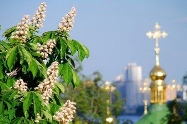 Традиційно день Києва в Україні припадає на останні вихідні весни bf3e82580b389