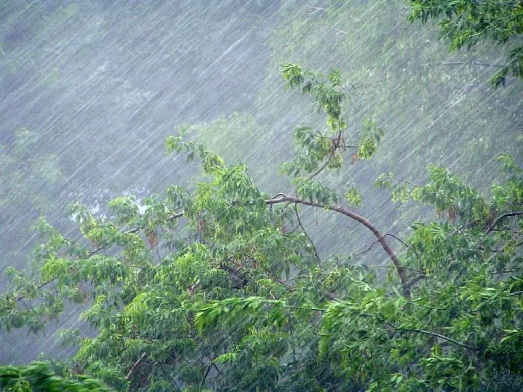 Погода в Києві 14 травня: синоптики попередили про грози та град ...