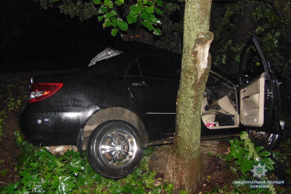 ДТП Канів, 27.07.18: BYD влетів у дерево - новини України