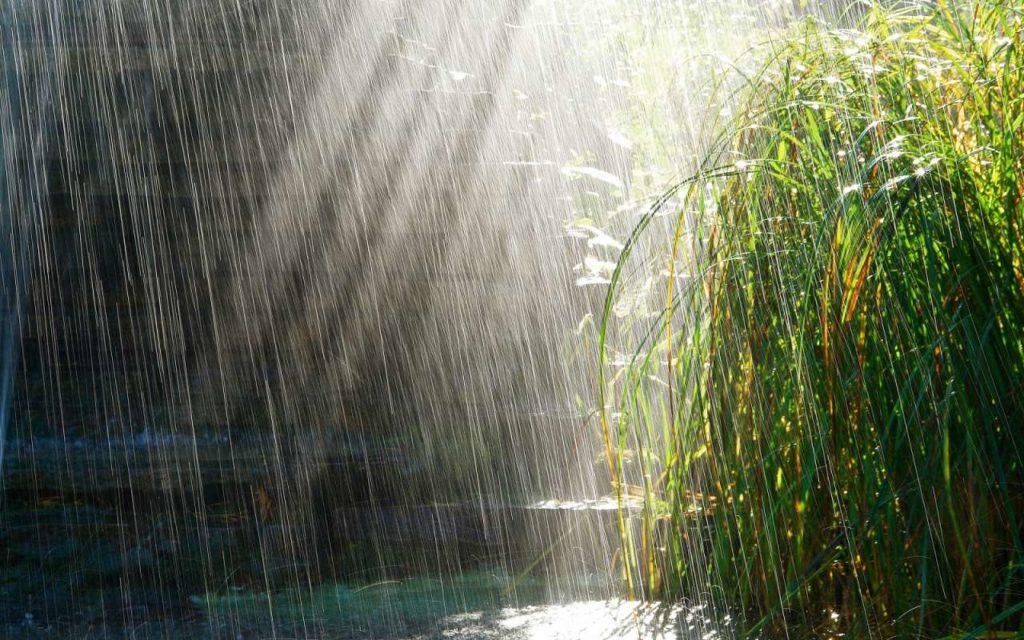 Дожди ожидаются на большей части Казахстана в ближайшие выходные